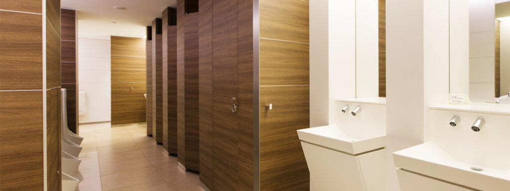 bathroom_dinoc_transformation_after